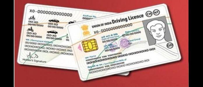 renew drivers license